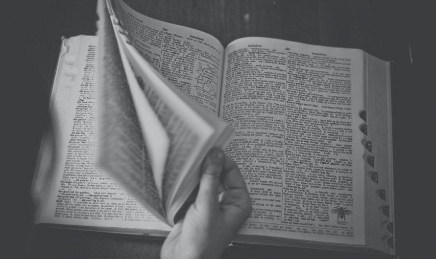 Don de dictionnaires aux élèves de CP