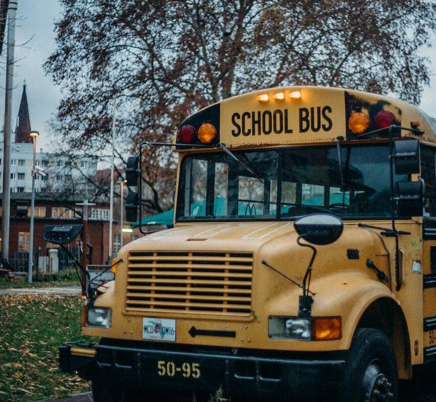 yellow school bus on road